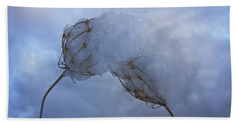 Winter Bath Sheet featuring the photograph Lean On Me by Ron Jones
