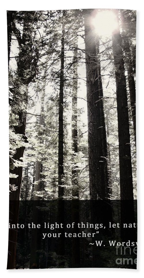 Trees Bath Sheet featuring the photograph Let Nature Be Your Teacher by Pam Holdsworth