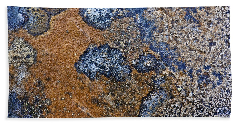 Lichen Bath Sheet featuring the photograph Lichen Pattern Series - 35 by Heiko Koehrer-Wagner