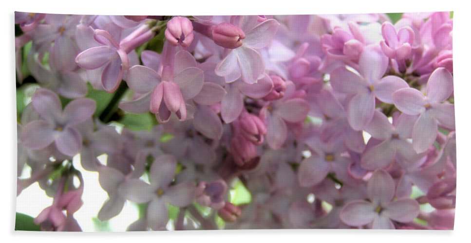 Lilac Bath Sheet featuring the photograph Lilac Blooms by Angie Rea