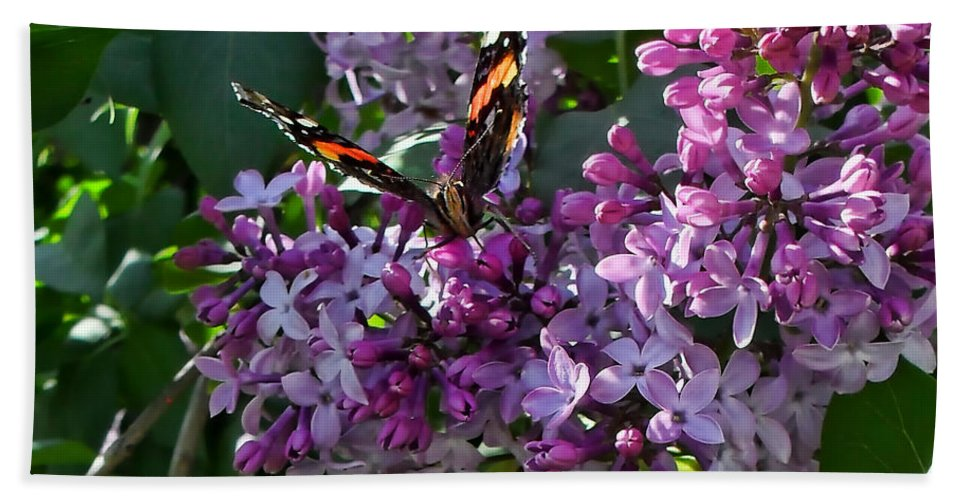 Butterflies Hand Towel featuring the photograph Lilac Butterfly by Kristie Bonnewell
