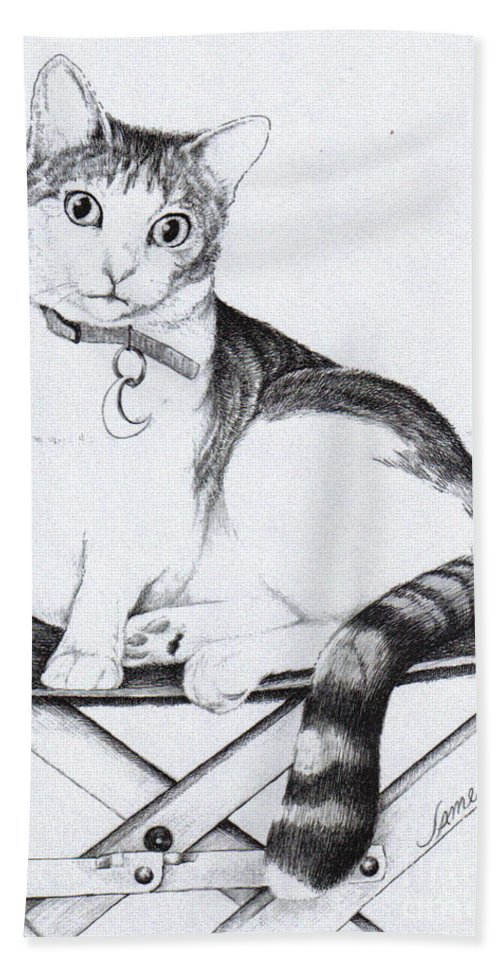 Cat Bath Sheet featuring the drawing Lilly by James Oliver