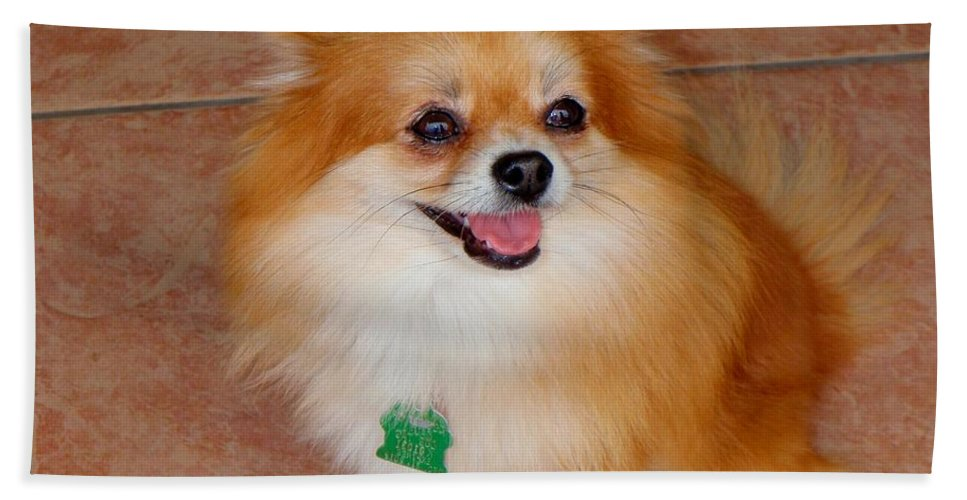 Dogs Bath Sheet featuring the photograph Lily - No 1 by Mary Deal