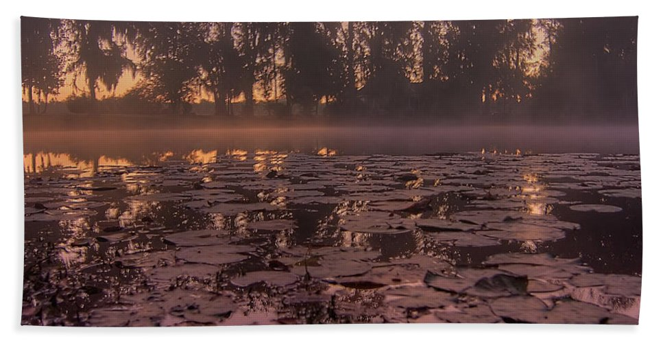 Lily Bath Sheet featuring the photograph Lily Pads In The Fog by Dan Wells