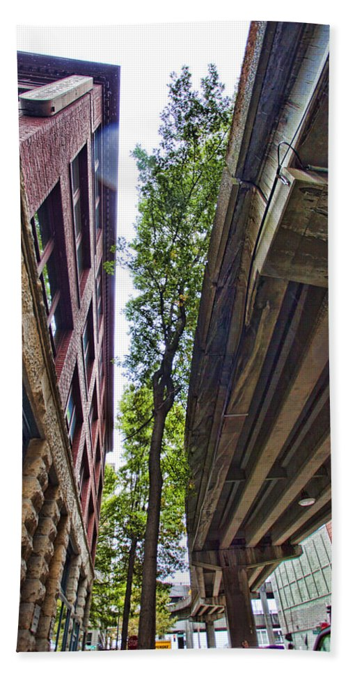 City Bath Sheet featuring the photograph Lines And Trees by Karen Ulvestad