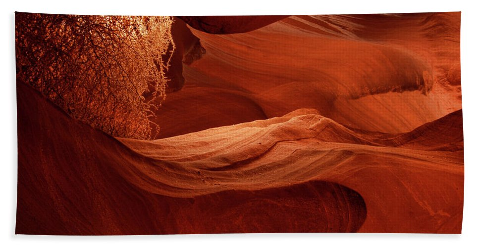 Tumbleweed Bath Sheet featuring the photograph Lit Tumbleweed In A Slot Canyon by Dave Mills
