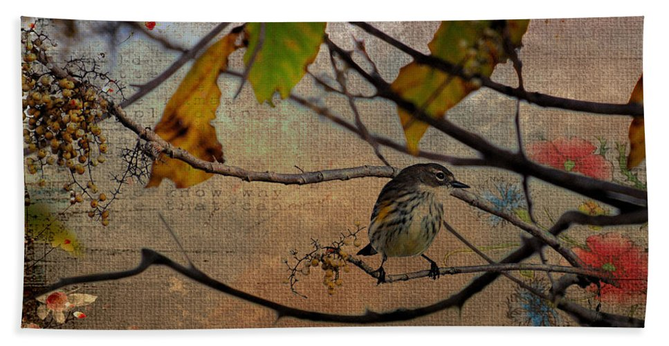 Bird Bath Sheet featuring the photograph Little Bird by Todd Hostetter