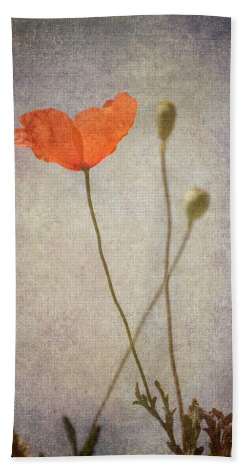 Poppy Bath Sheet featuring the photograph Little Poppy by Guido Montanes Castillo
