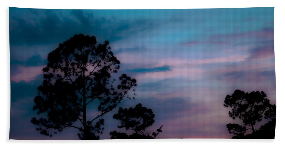 Sky Bath Sheet featuring the photograph Loblelly Pine Silhouette by DigiArt Diaries by Vicky B Fuller