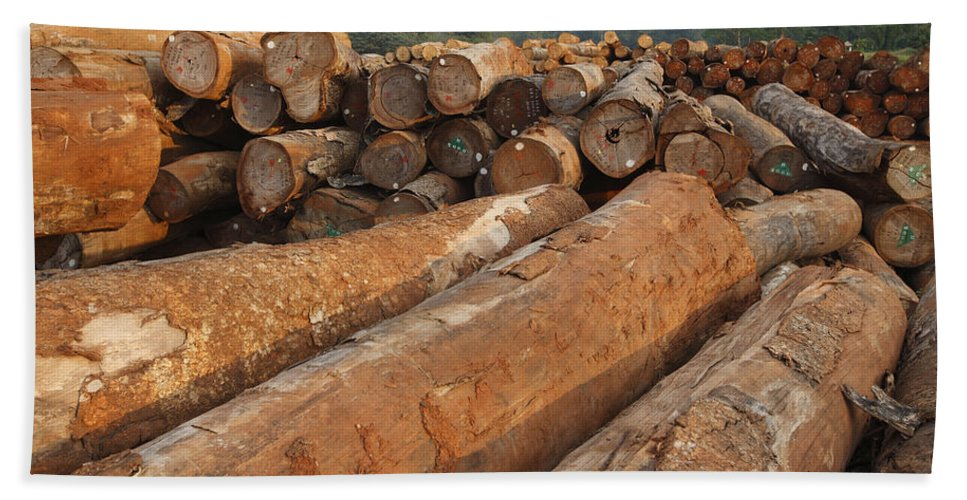 Mp Hand Towel featuring the photograph Logged Timber From The Tropical by Cyril Ruoso