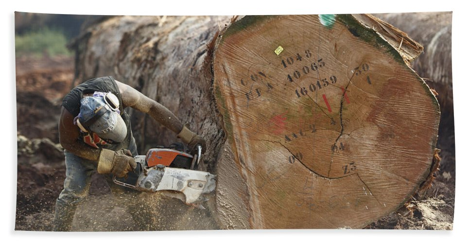 Mp Hand Towel featuring the photograph Logger Cutting Trunk Of Rainforest by Cyril Ruoso