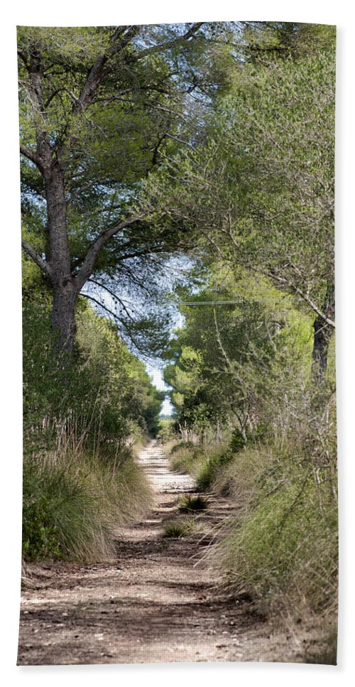 Menorca Hand Towel featuring the photograph Long Forest Road by Pedro Cardona Llambias