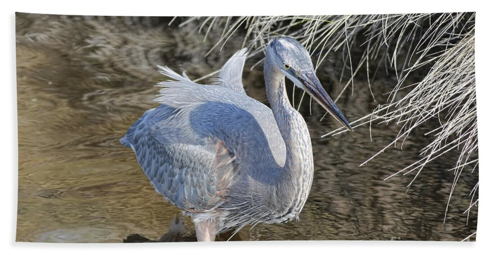 Blue Heron Hand Towel featuring the photograph Looking For Those Fish by Deborah Benoit