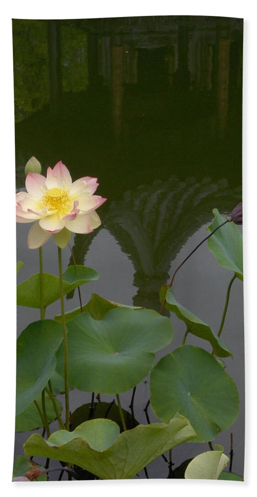 Lotus Bath Sheet featuring the photograph Lotus 2 by Catherine Helmick