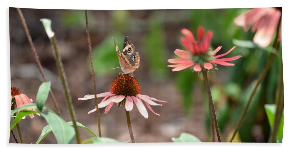Lover Hand Towel featuring the photograph Lover Of Coneflowers by Maria Urso
