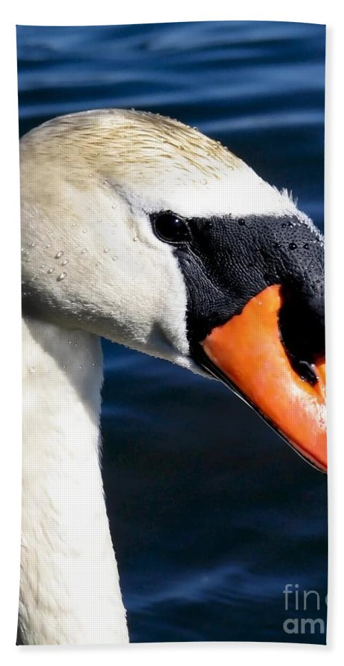 Swan Hand Towel featuring the photograph Lovey by Art Dingo