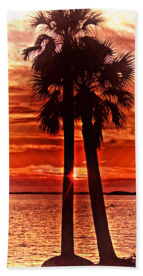 Palm Trees Hand Towel featuring the photograph Loving Palms-the Journey by Janie Johnson