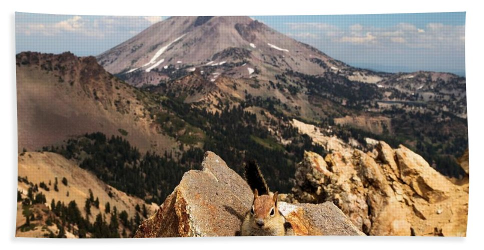 Lassen Volcanic National Park Bath Sheet featuring the photograph Lunch Break by Adam Jewell
