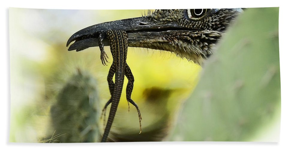 Greater Roadrunner Bath Towel featuring the photograph Lunch With A Roadrunner by Saija Lehtonen