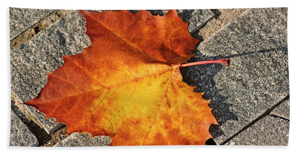 Maple Hand Towel featuring the photograph Maple Leaf In Fall by Carolyn Marshall