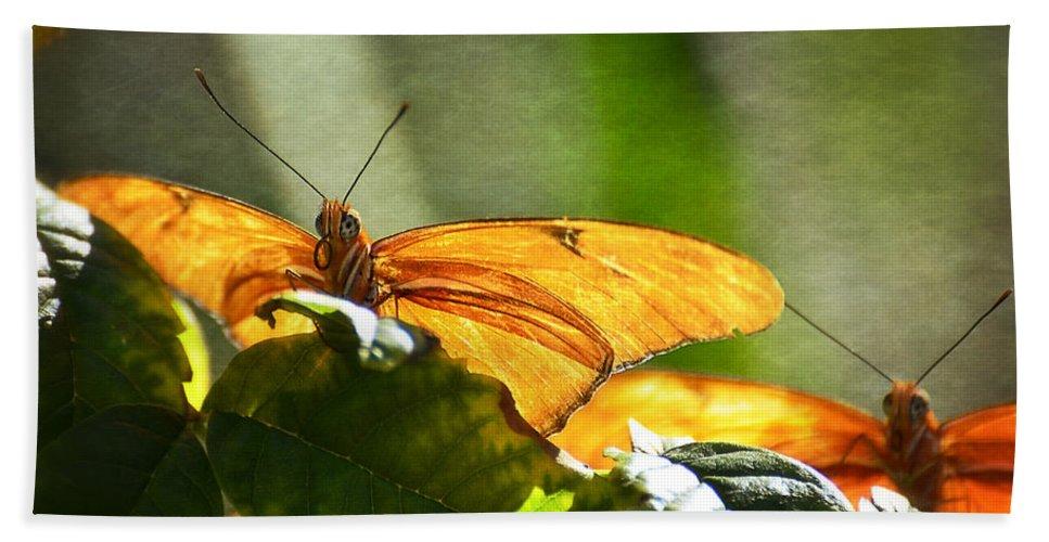 Julia Butterfly Bath Sheet featuring the photograph Me And My Shadow by Saija Lehtonen
