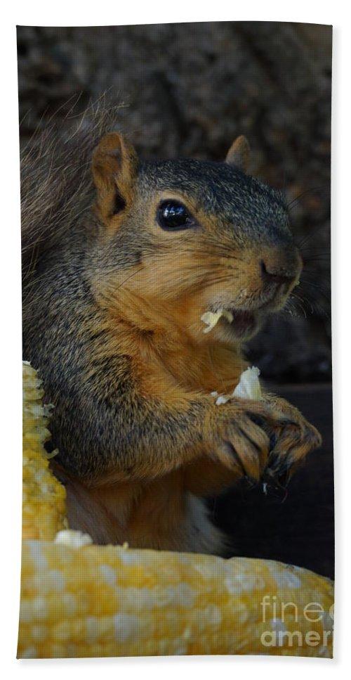 Squirrel Bath Sheet featuring the photograph Me Love Sweet Corn by Lori Tordsen