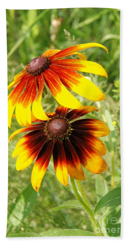 Mexican Sunflowers Bath Sheet featuring the photograph Mexican Sunflowers 2 by Grace Grogan