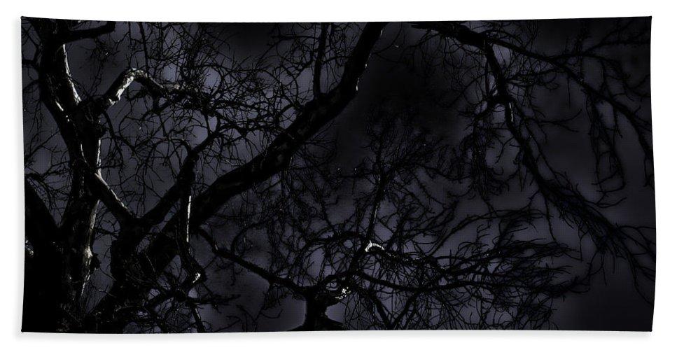Tree Bath Sheet featuring the photograph Midnight Tree 1 by David Sanchez