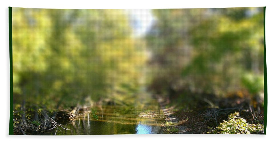 Tiltshift Hand Towel featuring the photograph Mini Stream by Ericamaxine Price