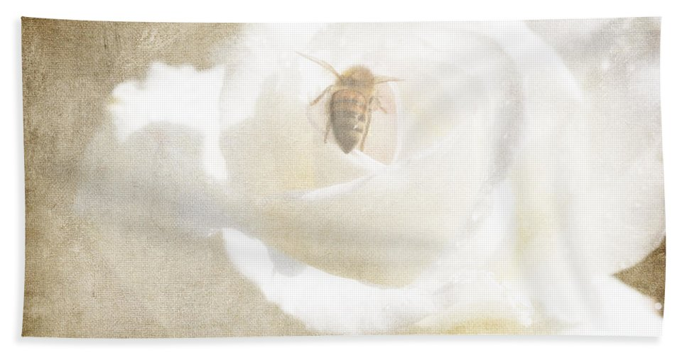 Bee Bath Sheet featuring the photograph Miss Bee Haven II by Linda Dunn