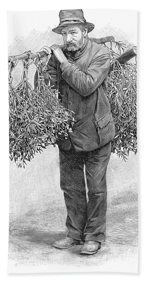 1894 Hand Towel featuring the photograph Mistletoe Gatherer, 1894 by Granger