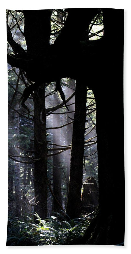 Forest Bath Sheet featuring the photograph Misty Light At Second Beach by Marie Jamieson