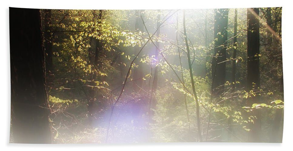 Mist Bath Sheet featuring the photograph Misty Woods by Bill Cannon