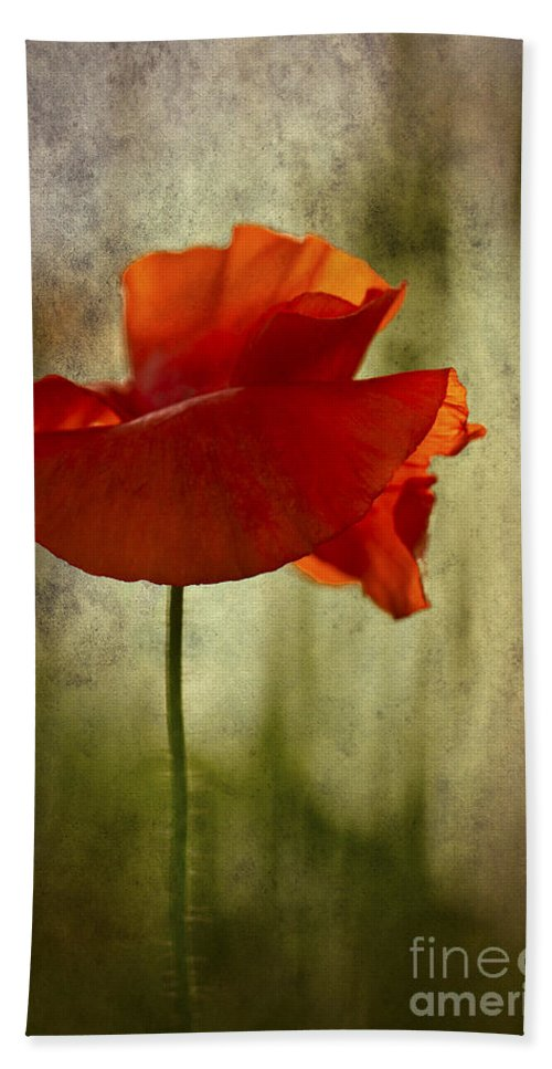 Poppy Hand Towel featuring the photograph Moody Poppy. by Clare Bambers - Bambers Images