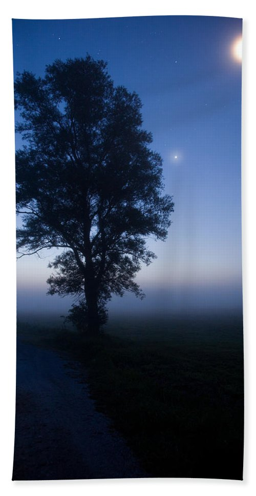 Tree Bath Sheet featuring the photograph Moonlit Dawn by Ian Middleton