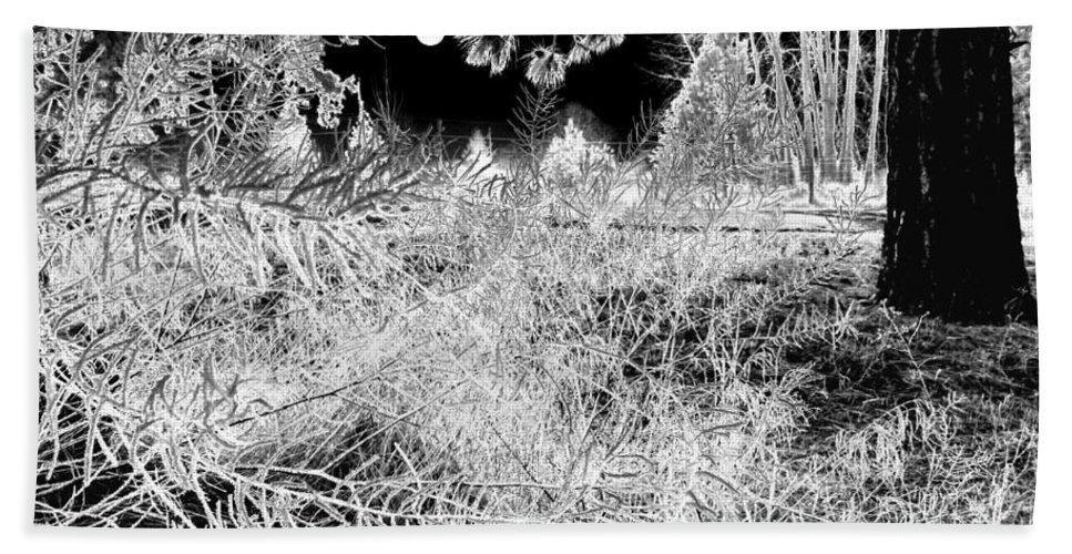 Frost Bath Sheet featuring the digital art Moonlit Frost by Will Borden