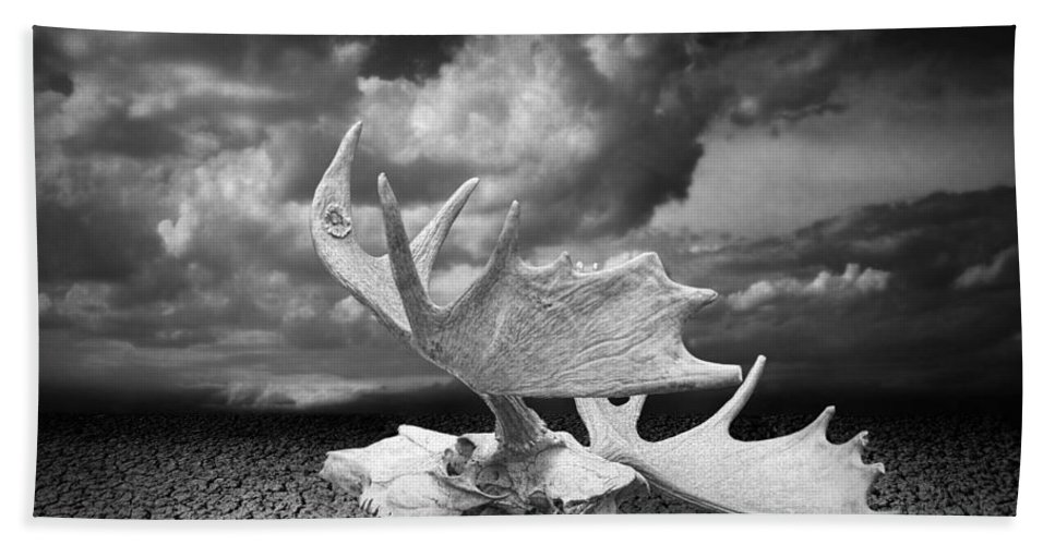 Art Bath Sheet featuring the photograph Moose Skull On Parched Earth by Randall Nyhof