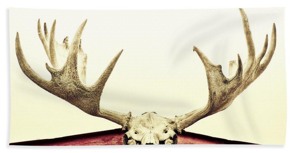 Moose Bath Sheet featuring the photograph Moose Trophy by Priska Wettstein