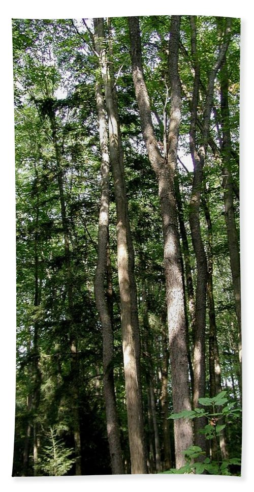 Campgrounds Hand Towel featuring the photograph More Platte by Joseph Yarbrough