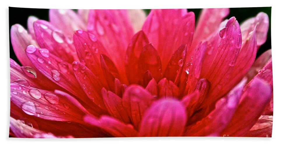 Floral Hand Towel featuring the photograph Morning Rain by Susan Herber