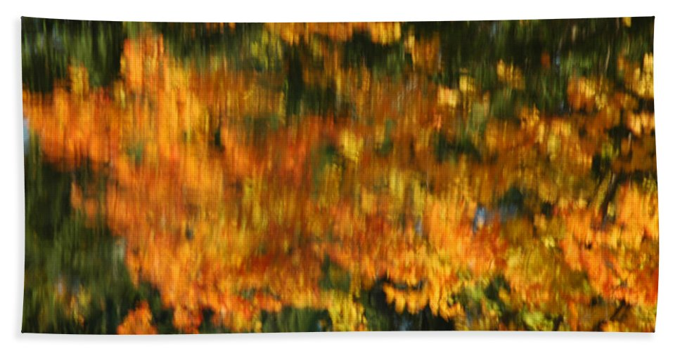 Usa Bath Sheet featuring the photograph Morphing Colors by LeeAnn McLaneGoetz McLaneGoetzStudioLLCcom