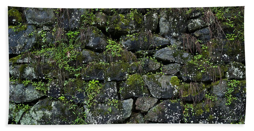 Abstract Bath Sheet featuring the photograph Moss And Stone by John Greim