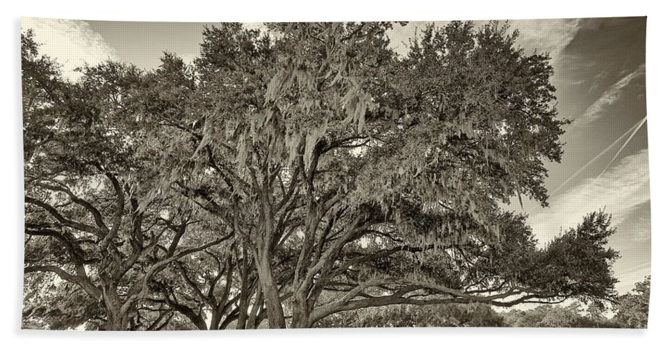 Beaufort County Hand Towel featuring the photograph Moss-draped Live Oaks Sepia Toned by Phill Doherty