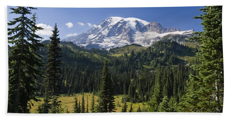 Mp Hand Towel featuring the photograph Mount Rainier With Coniferous Forest by Konrad Wothe