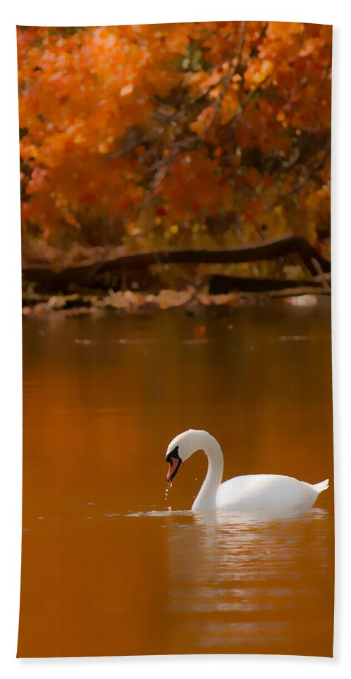 Mute Swan Native Hand Towel featuring the photograph Mute Swan by Randall Branham