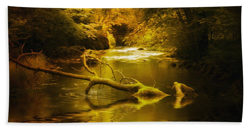 Background Hand Towel featuring the photograph Mystery In Forest by Svetlana Sewell