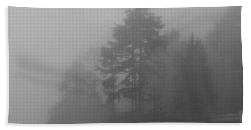 Fog Bath Sheet featuring the photograph Mystery In The Trees by Katie Wing Vigil