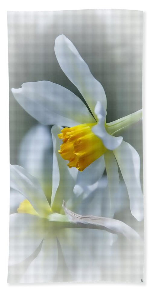 Narcissus Hand Towel featuring the photograph Narcissus by Rebecca Samler