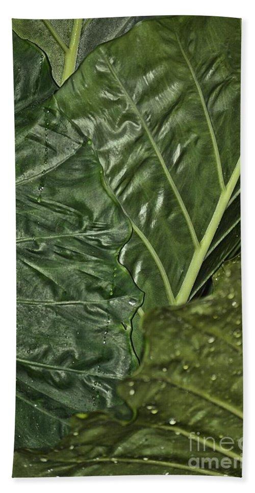 Natural Bath Sheet featuring the photograph Natural Abstract 39 by Maria Urso