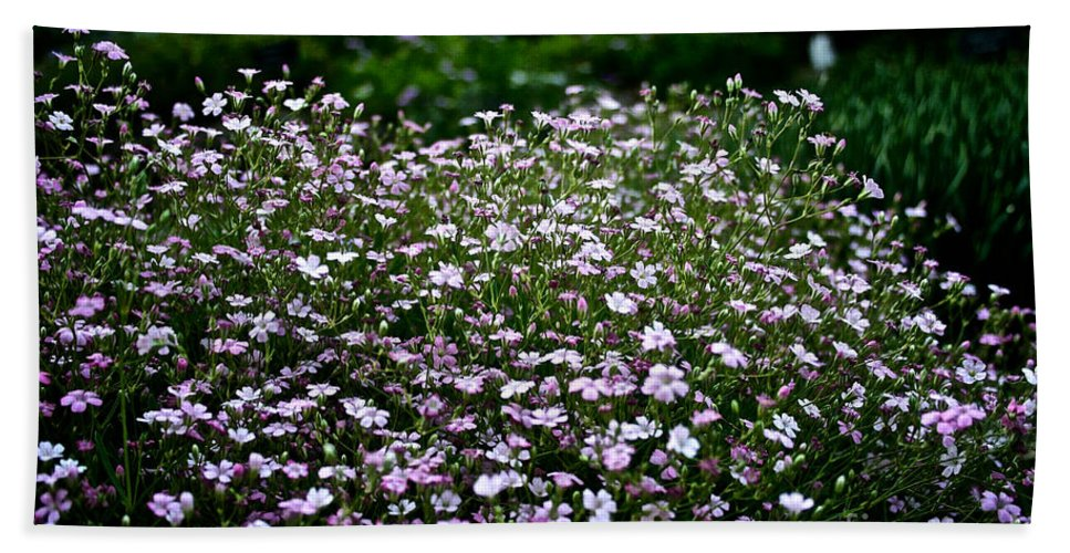 Plant Bath Sheet featuring the photograph Natural Carpet by Susan Herber